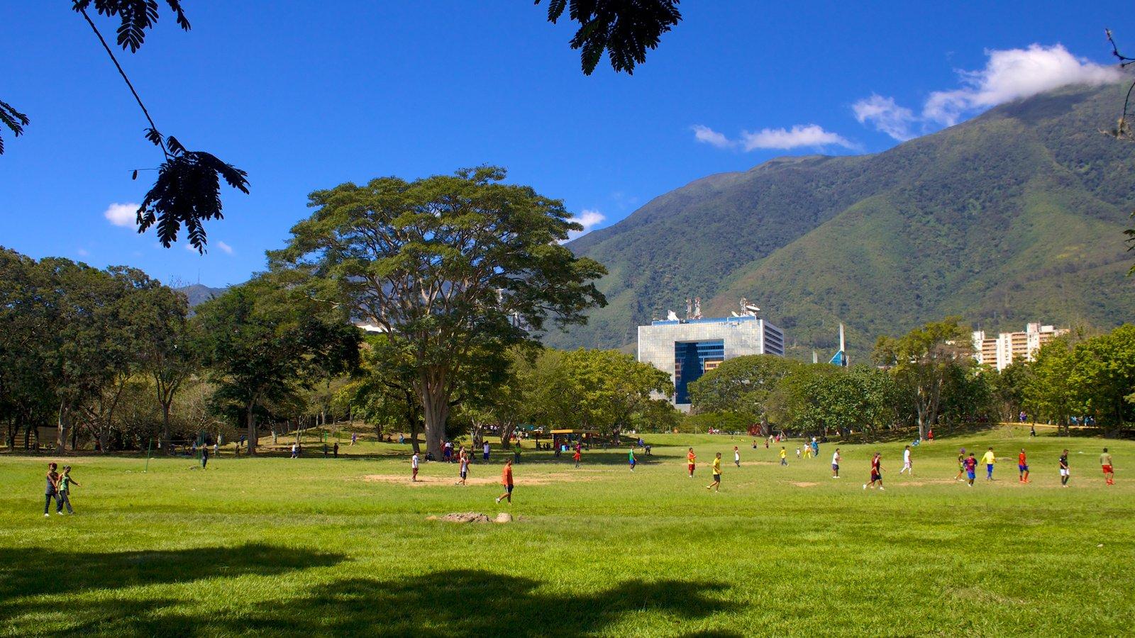 Parque do Leste caracterizando um jardim