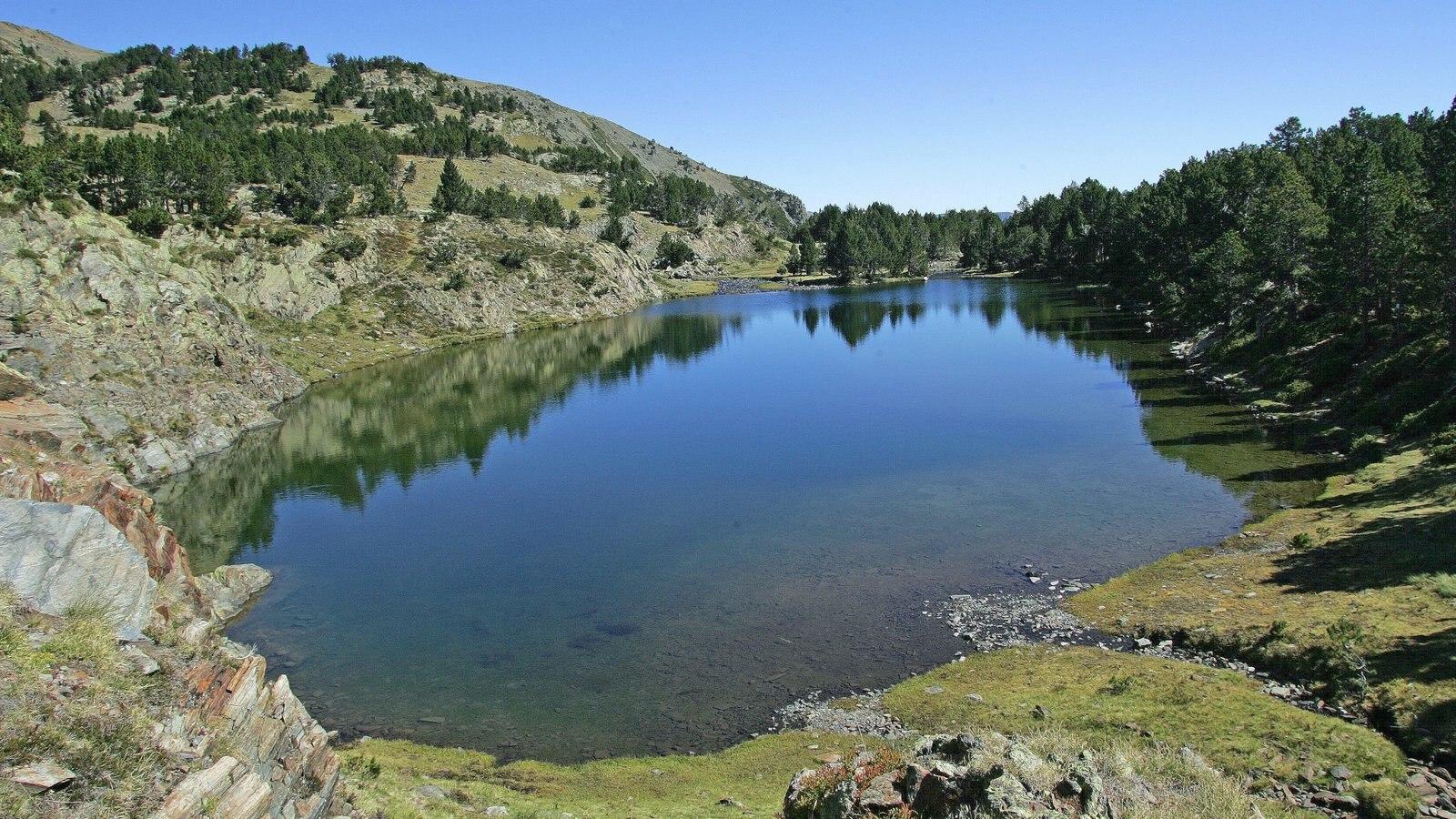 Quebec ofreciendo bosques, vistas de paisajes y un lago o abrevadero