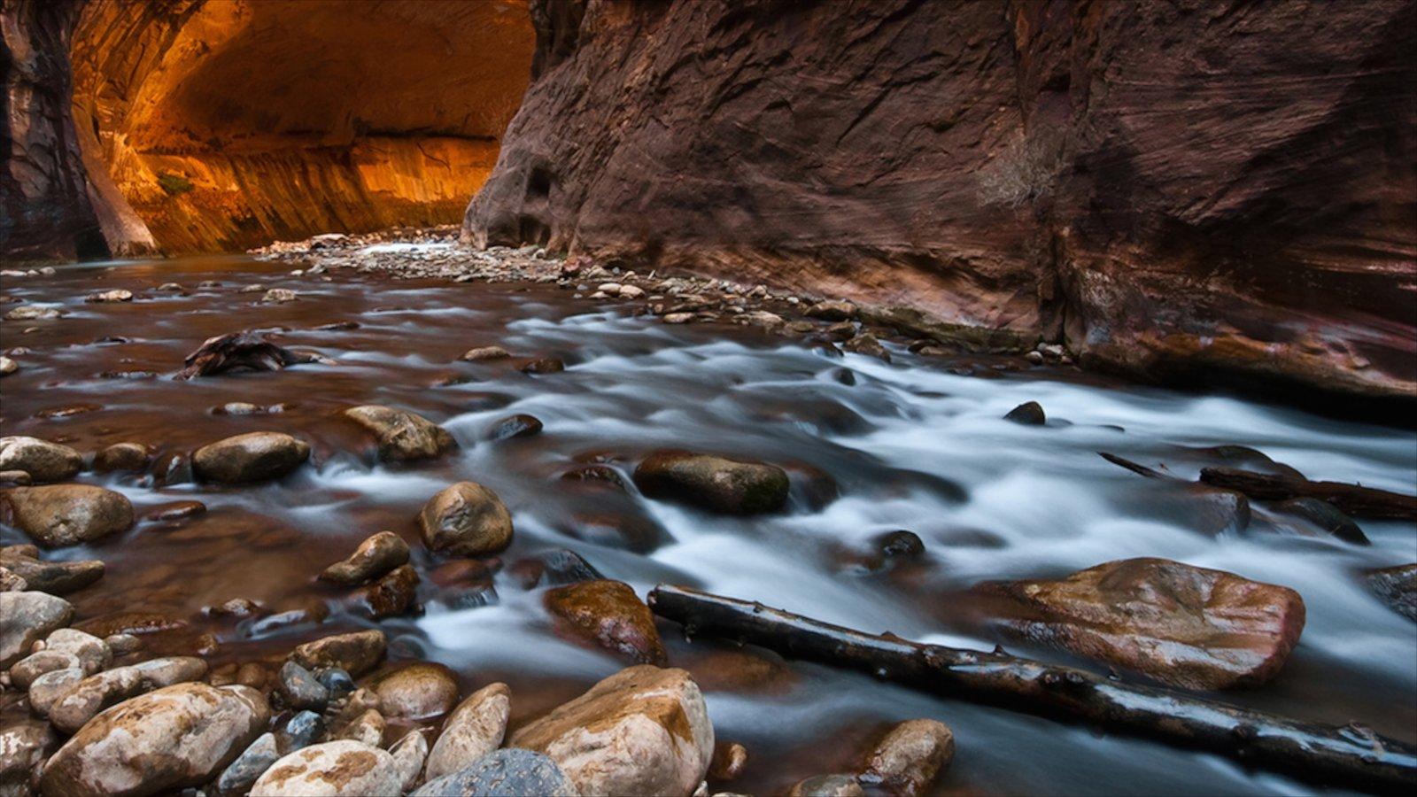 Parque Nacional Zion que incluye un río o arroyo