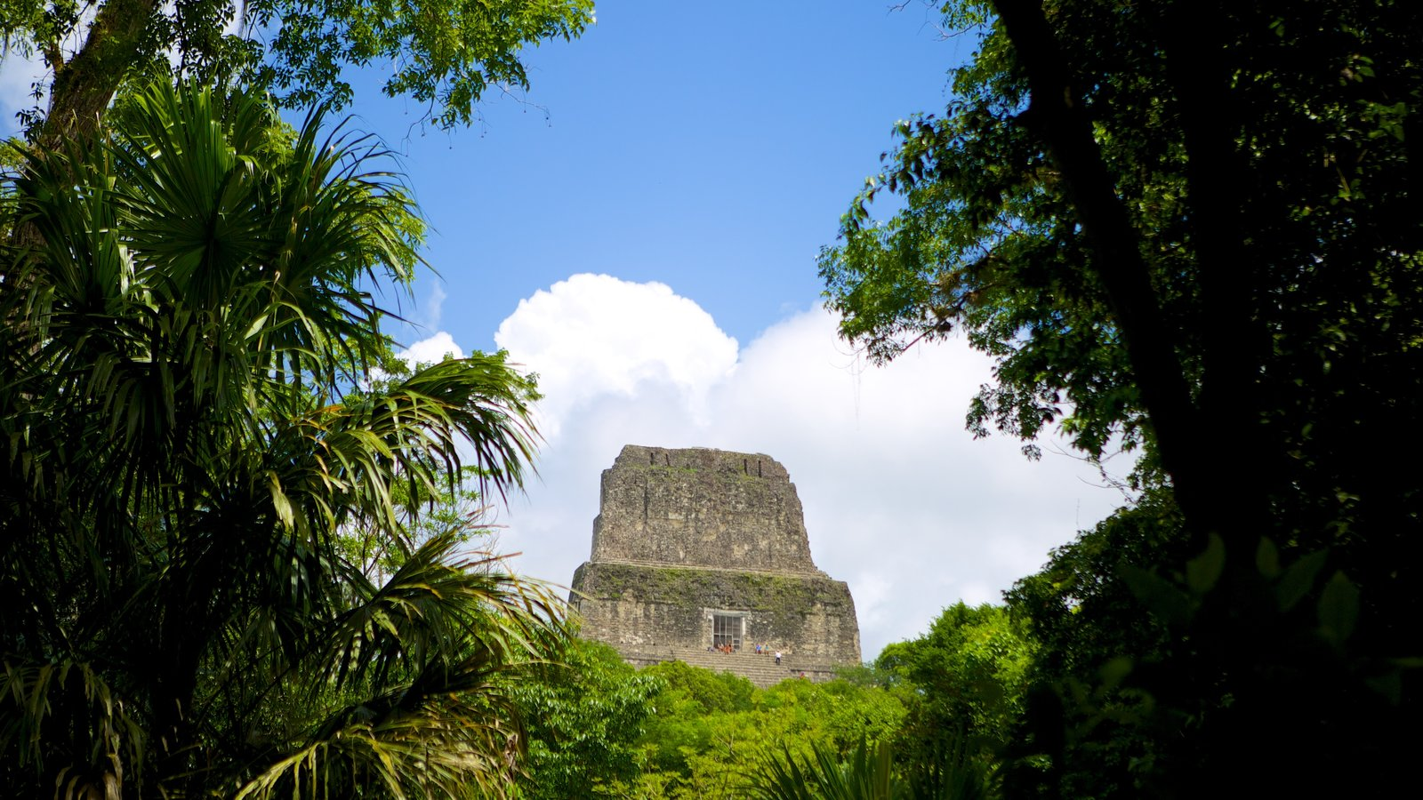 Tikal which includes building ruins, heritage elements and forests