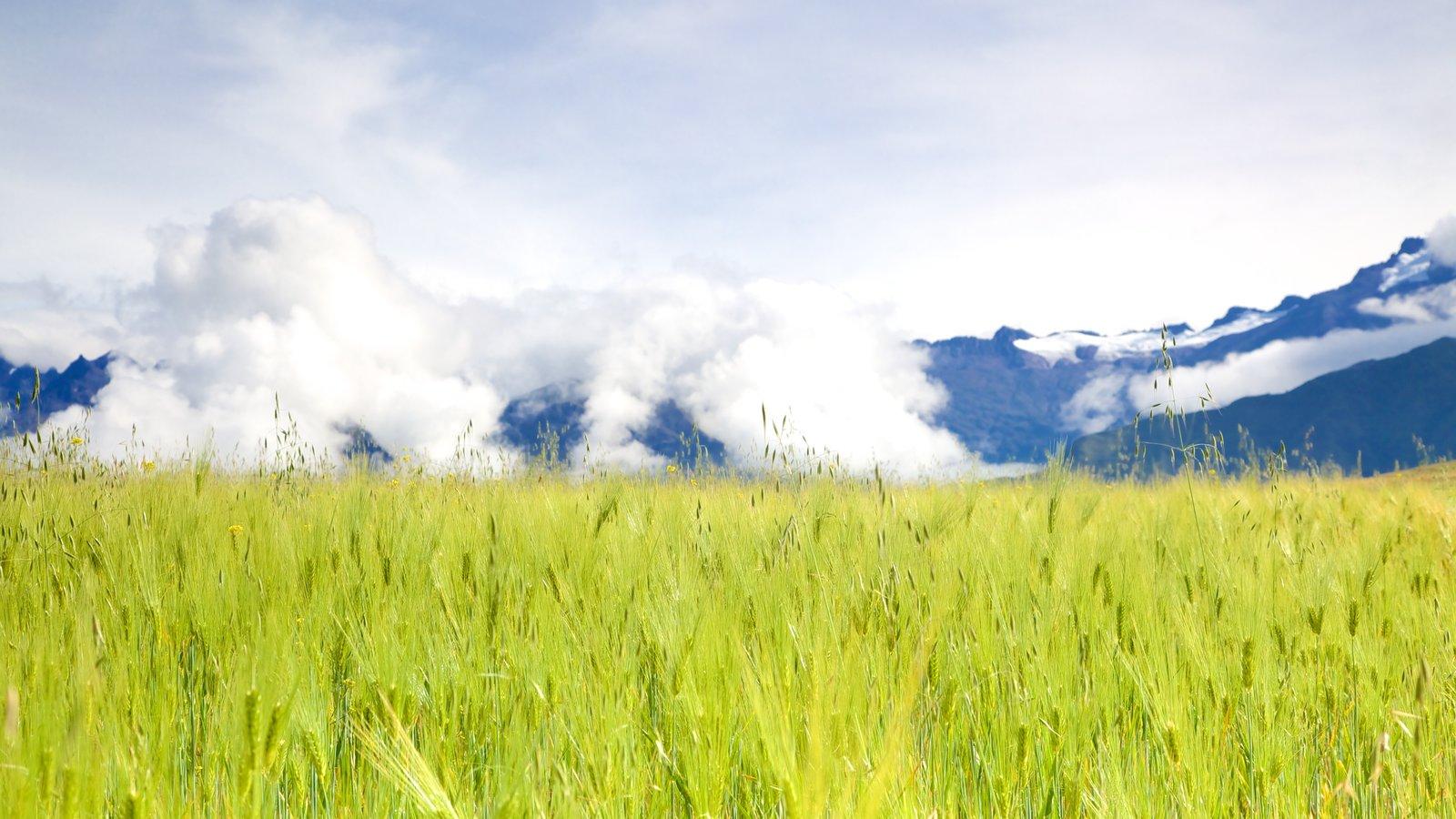 Peru which includes farmland and landscape views