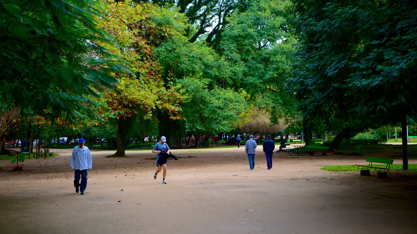 Parque Moinhos de Vento que inclui escalada ou caminhada e um parque assim como um pequeno grupo de pessoas