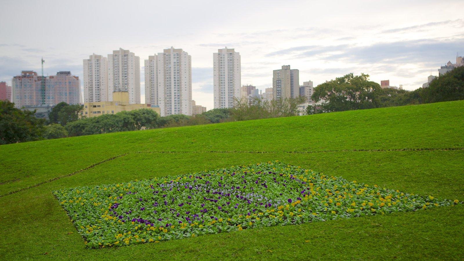 Parque Botânico de Curitiba mostrando um arranha-céu, um jardim e uma cidade