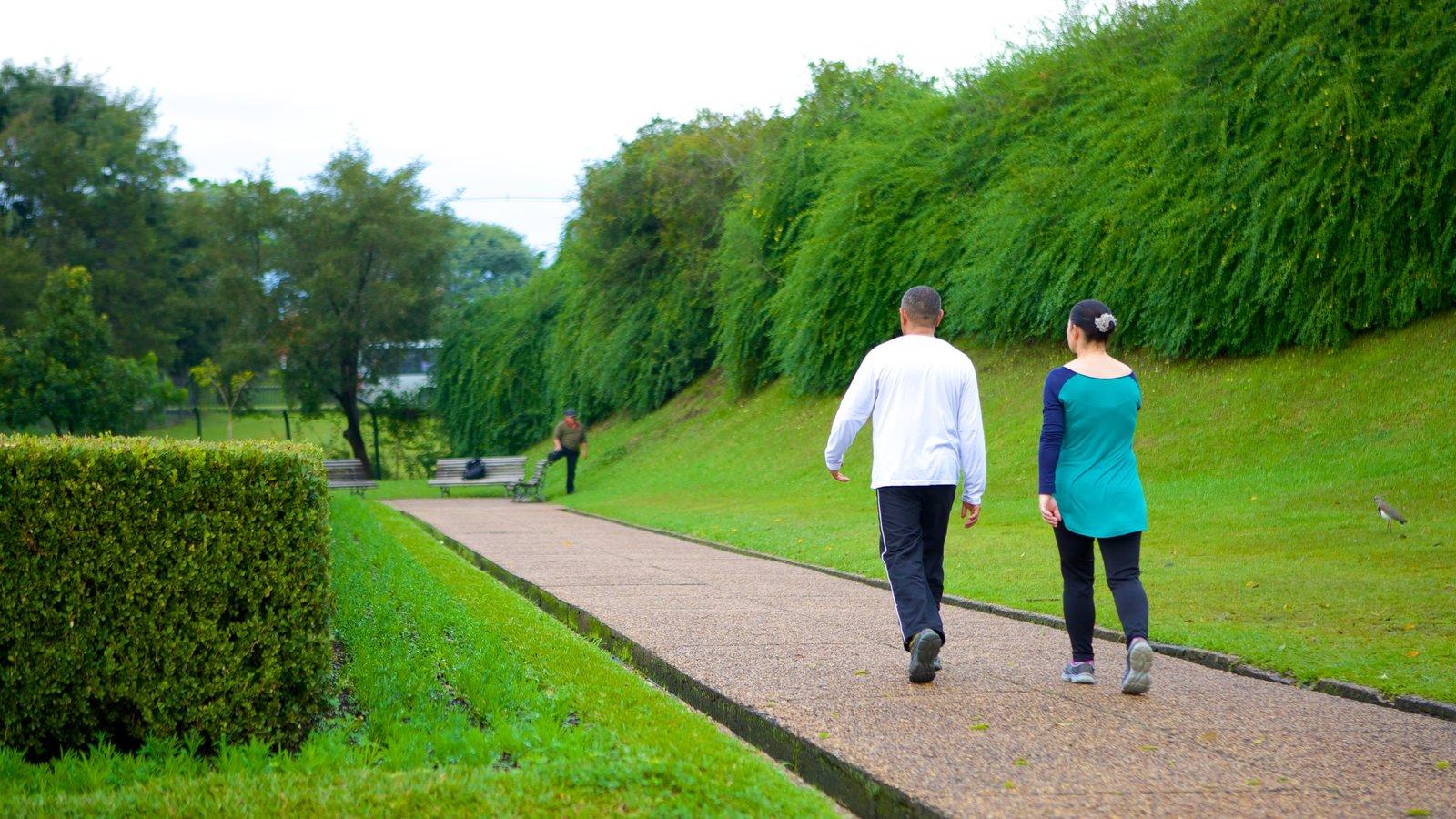 Parque Botânico de Curitiba mostrando um jardim assim como um casal