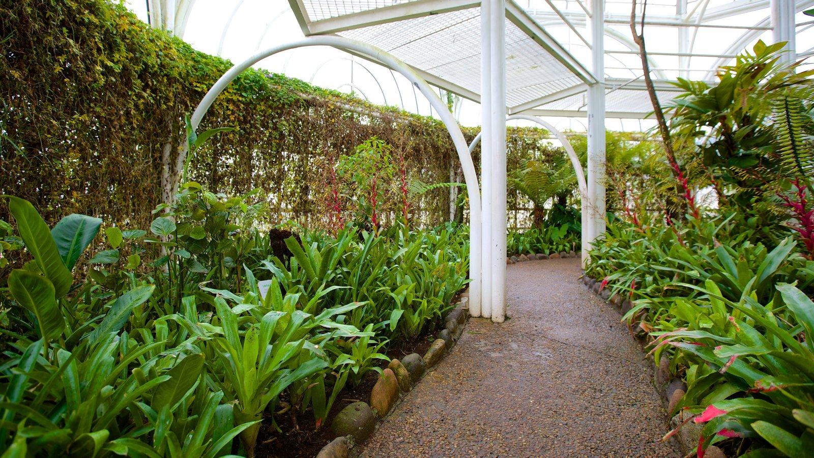 Parque Botânico de Curitiba que inclui vistas internas e um parque