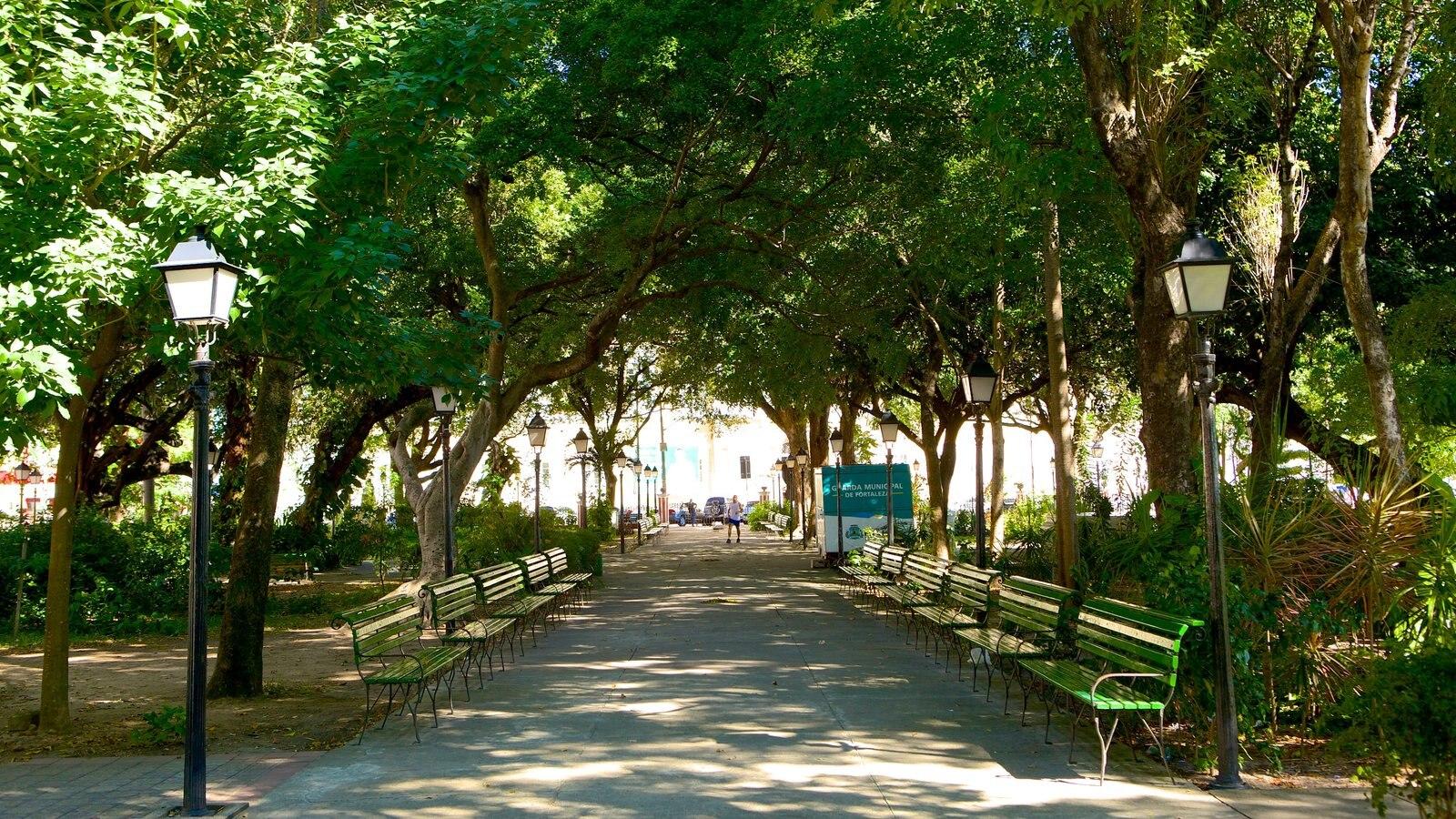 Passeio Público que inclui um jardim