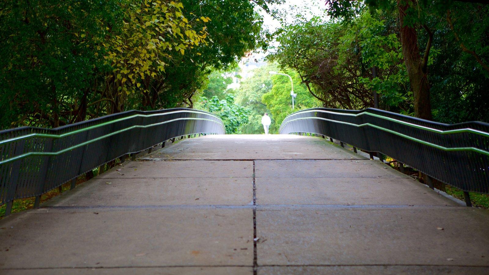 Parque Moinhos de Vento que inclui um jardim e uma ponte