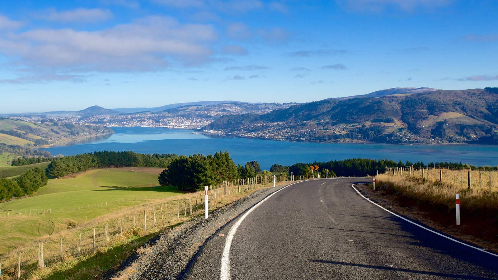 Dunedin which includes landscape views and farmland