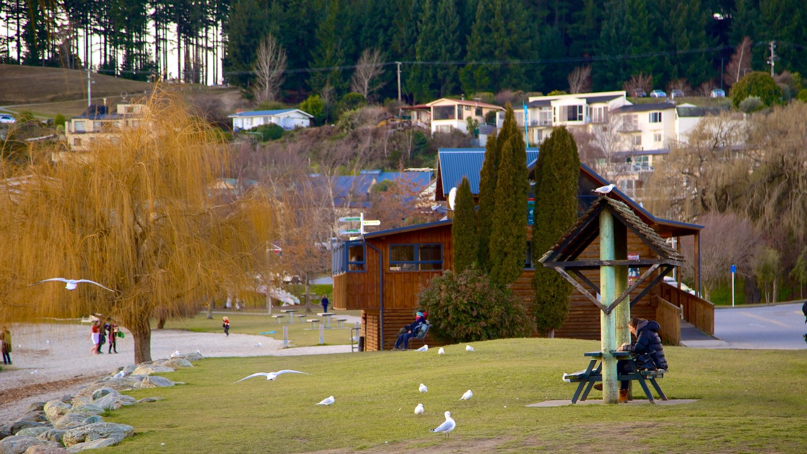Gardens & Parks Pictures: View Images of Wanaka