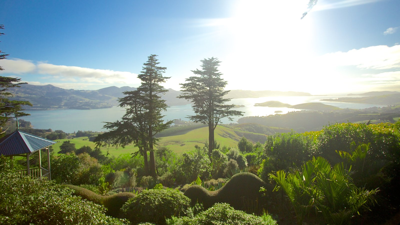 Larnach Castle which includes forest scenes and landscape views