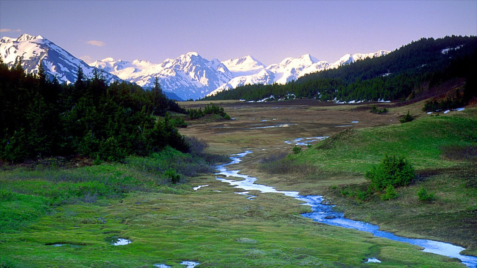 Anchorage showing snow, tranquil scenes and mountains