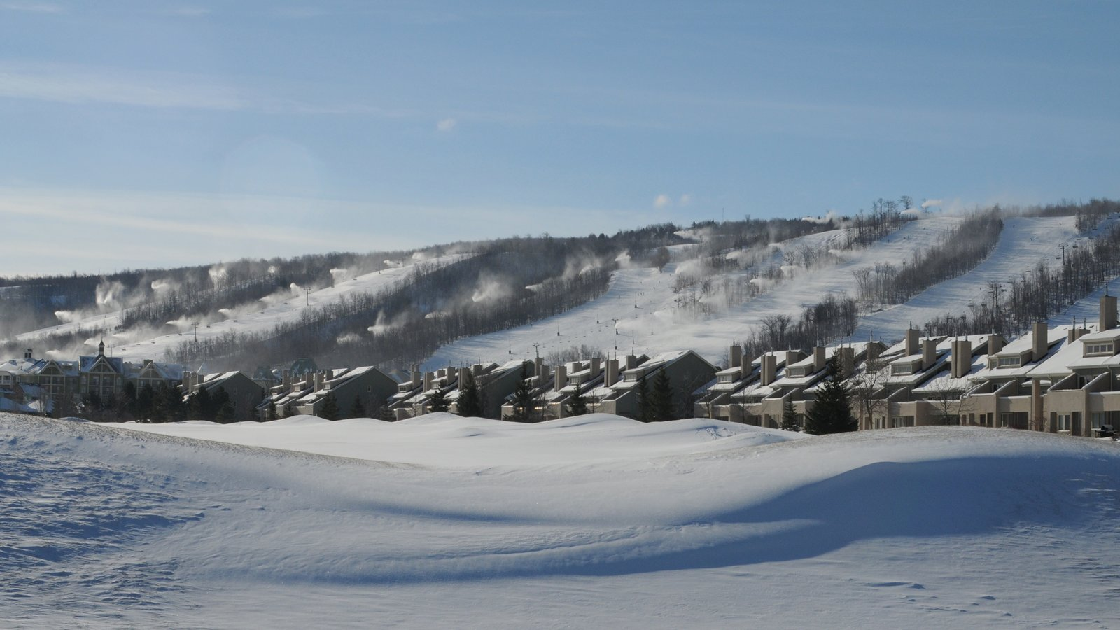 Blue Mountain Ski Resort mostrando paisagem e neve