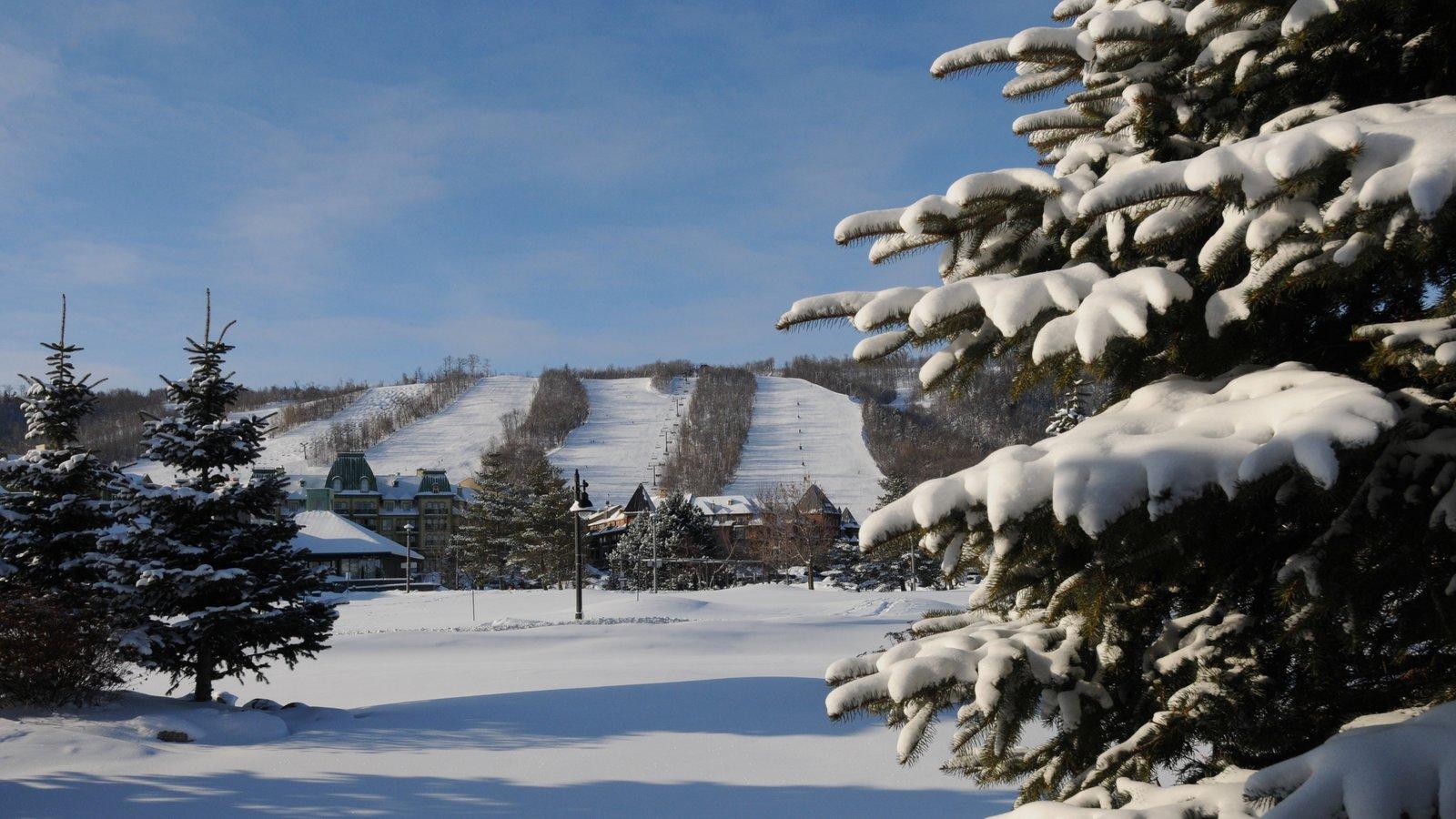 Blue Mountain Ski Resort mostrando neve