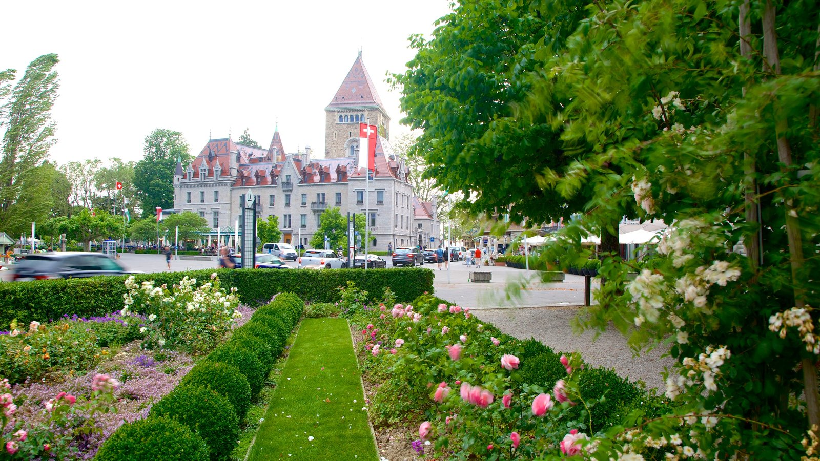 Flowers Pictures View Images Of Lausanne