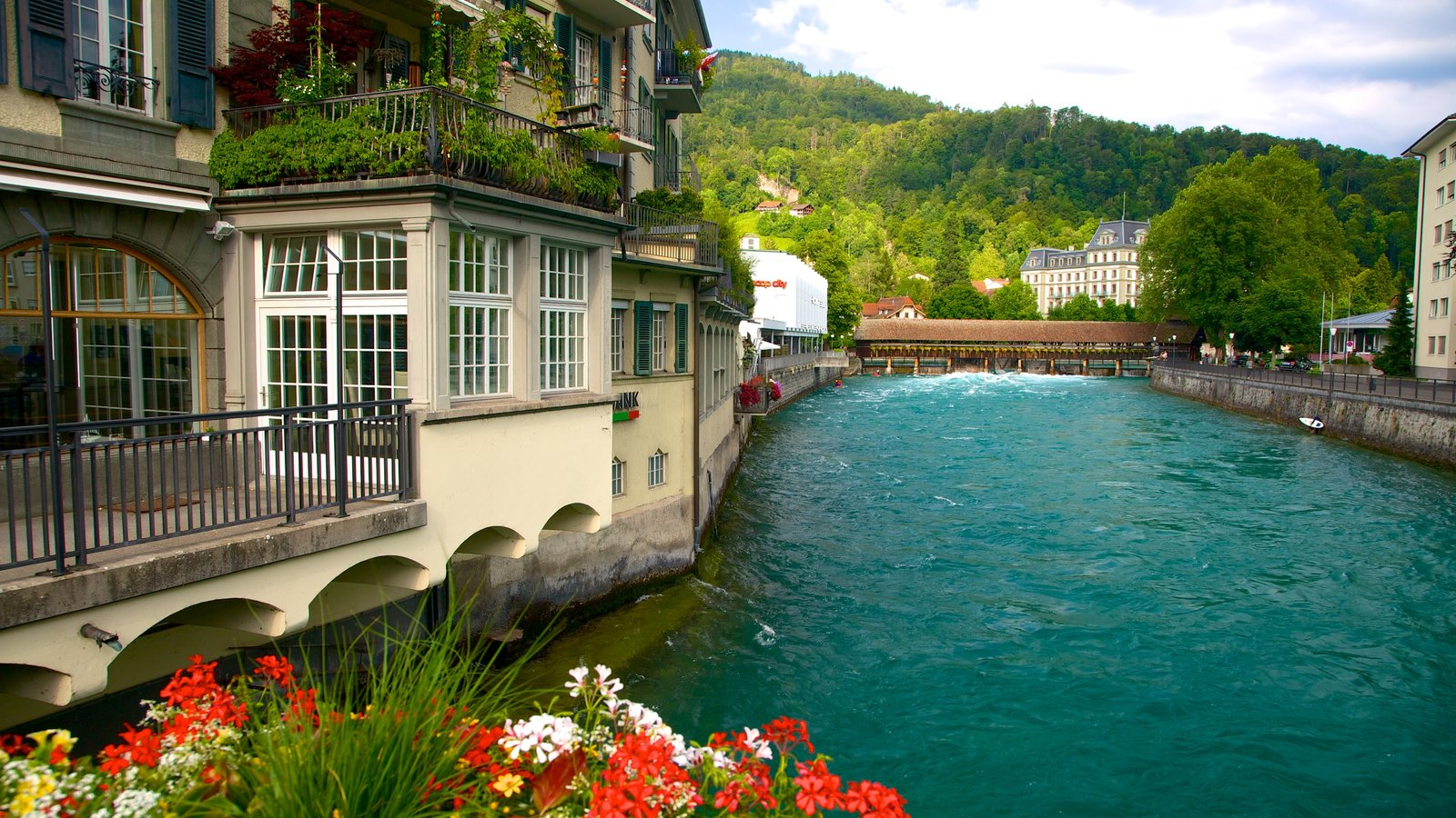 Thun which includes a house, a river or creek and flowers