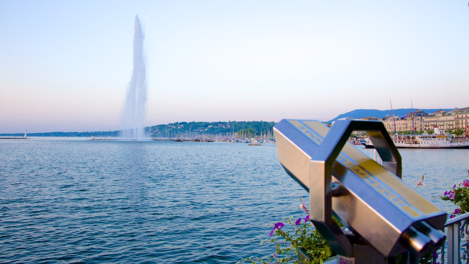Jet d\'Eau Fountain showing views, a lake or waterhole and a fountain