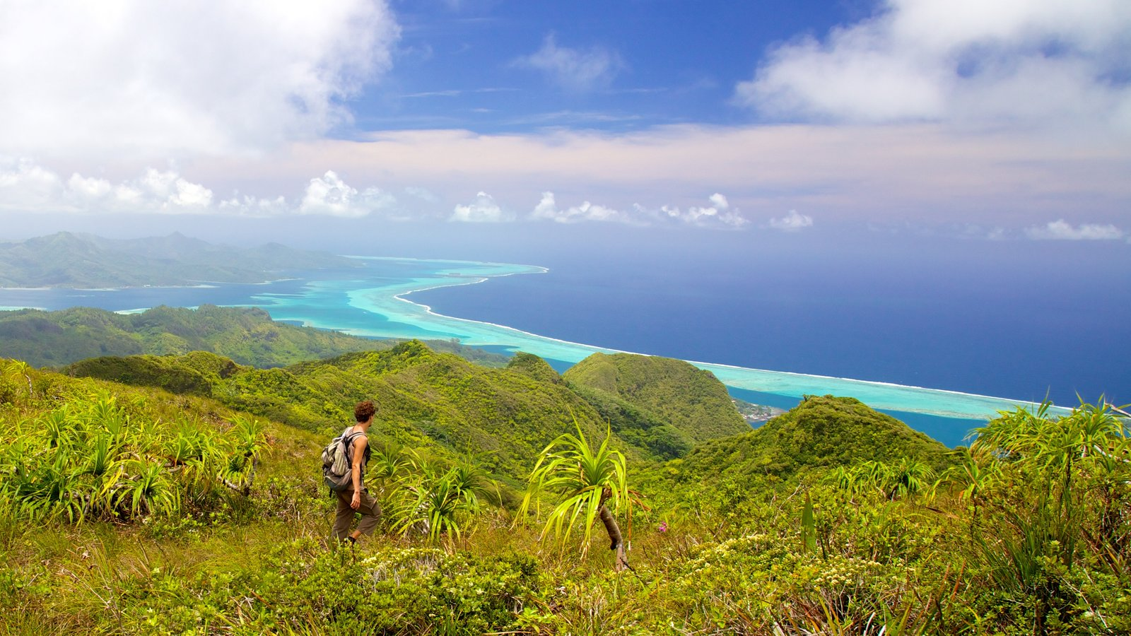 Tahiti featuring hiking or walking, landscape views and tranquil scenes