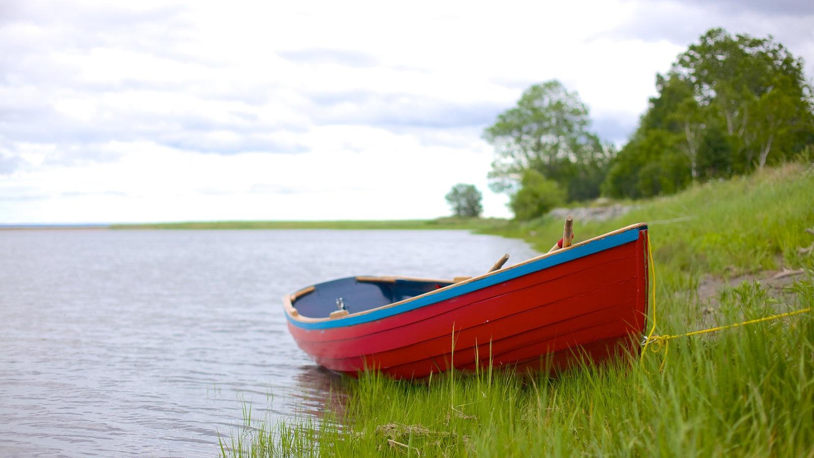 Antigonish mostrando paisagens litorâneas e canoagem