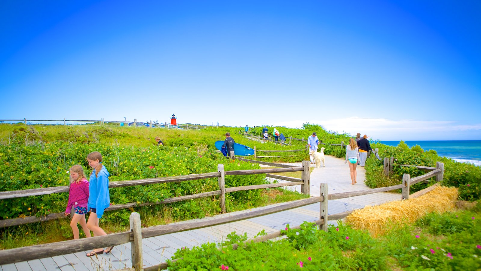 Cape Cod featuring hiking or walking and general coastal views as well as children