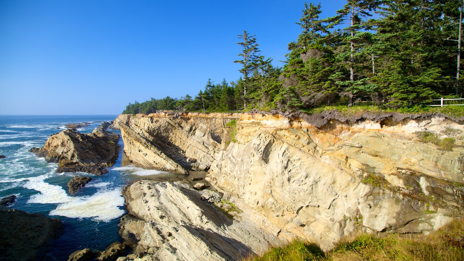 Shore Acres State Park which includes rugged coastline and landscape views