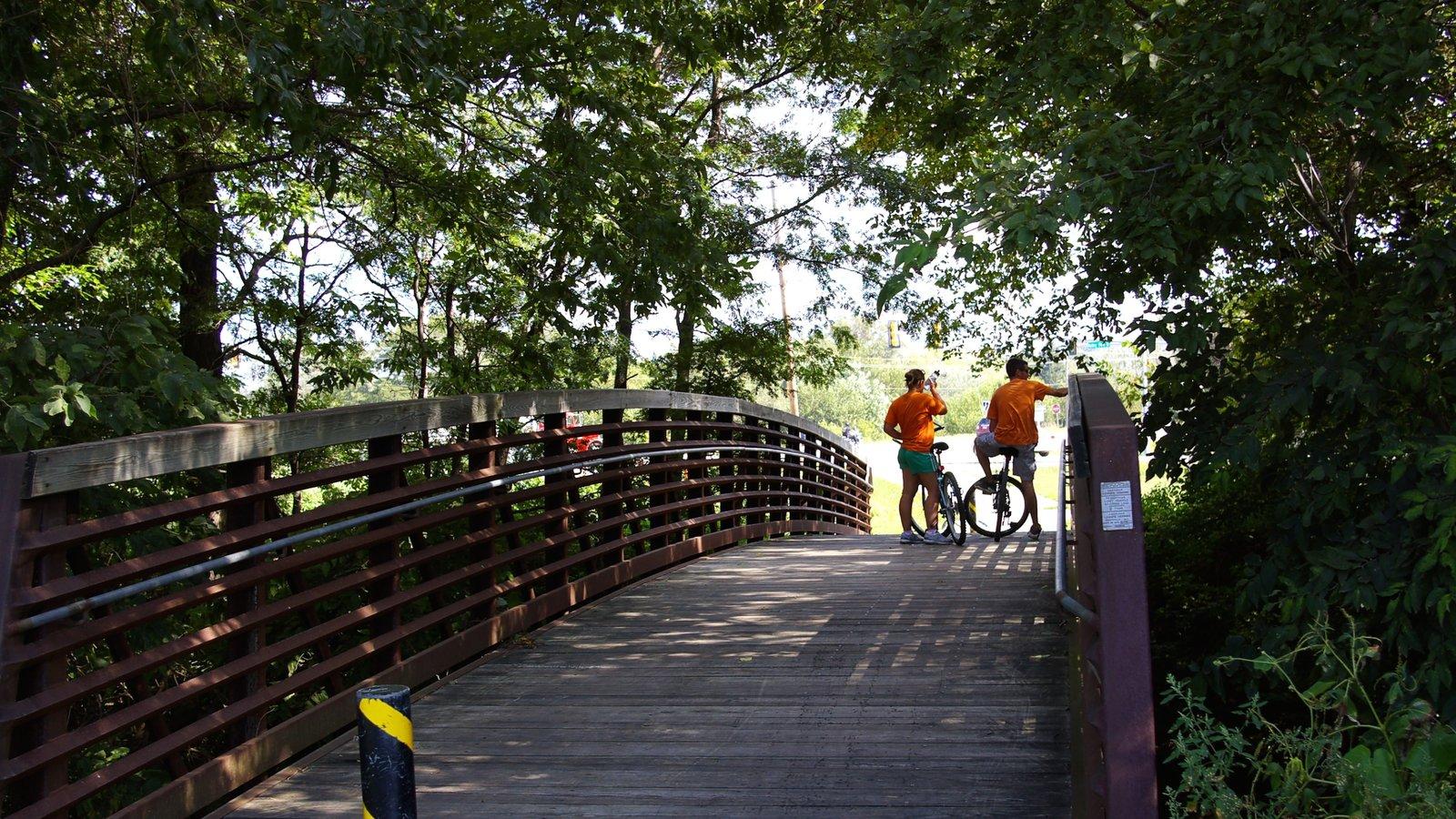 Council Bluffs ofreciendo un jardín y un puente y también un pequeño grupo de personas