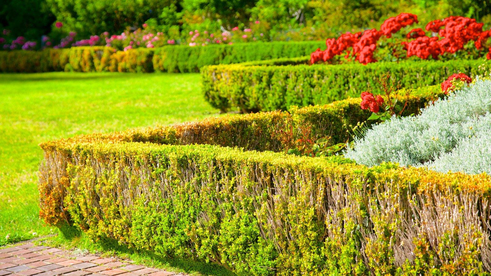 Parque estatal Shore Acres mostrando flores y un parque