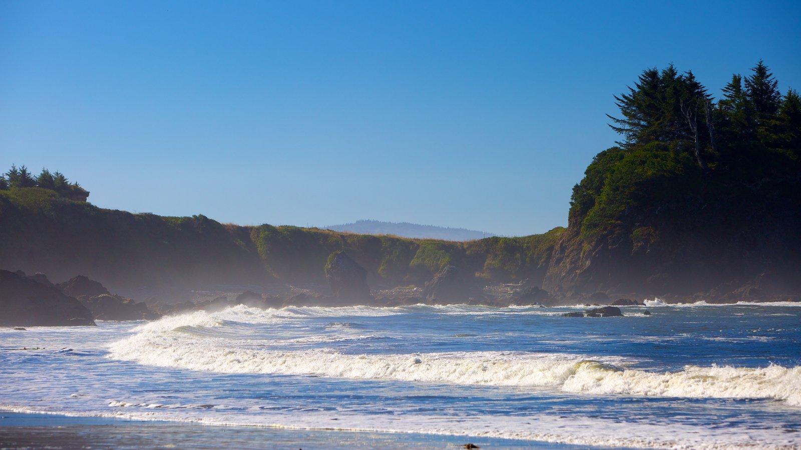Brookings featuring waves