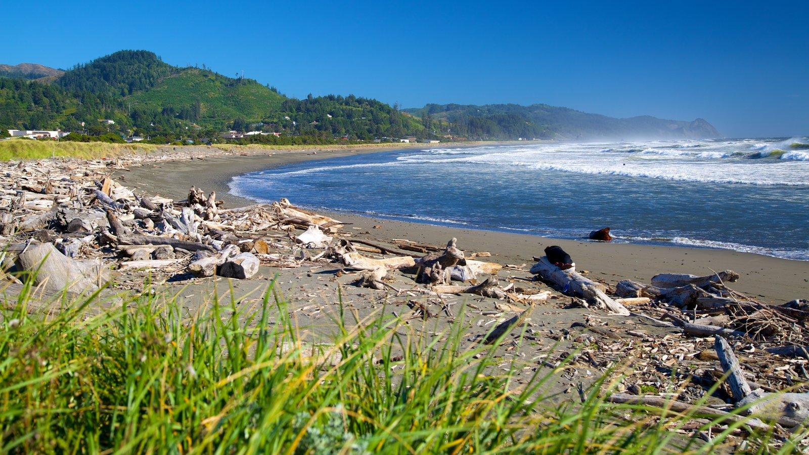 Gold Beach which includes a beach