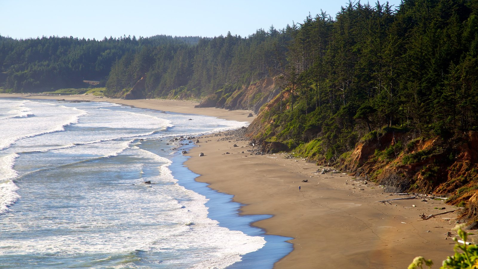 Port Orford which includes a beach