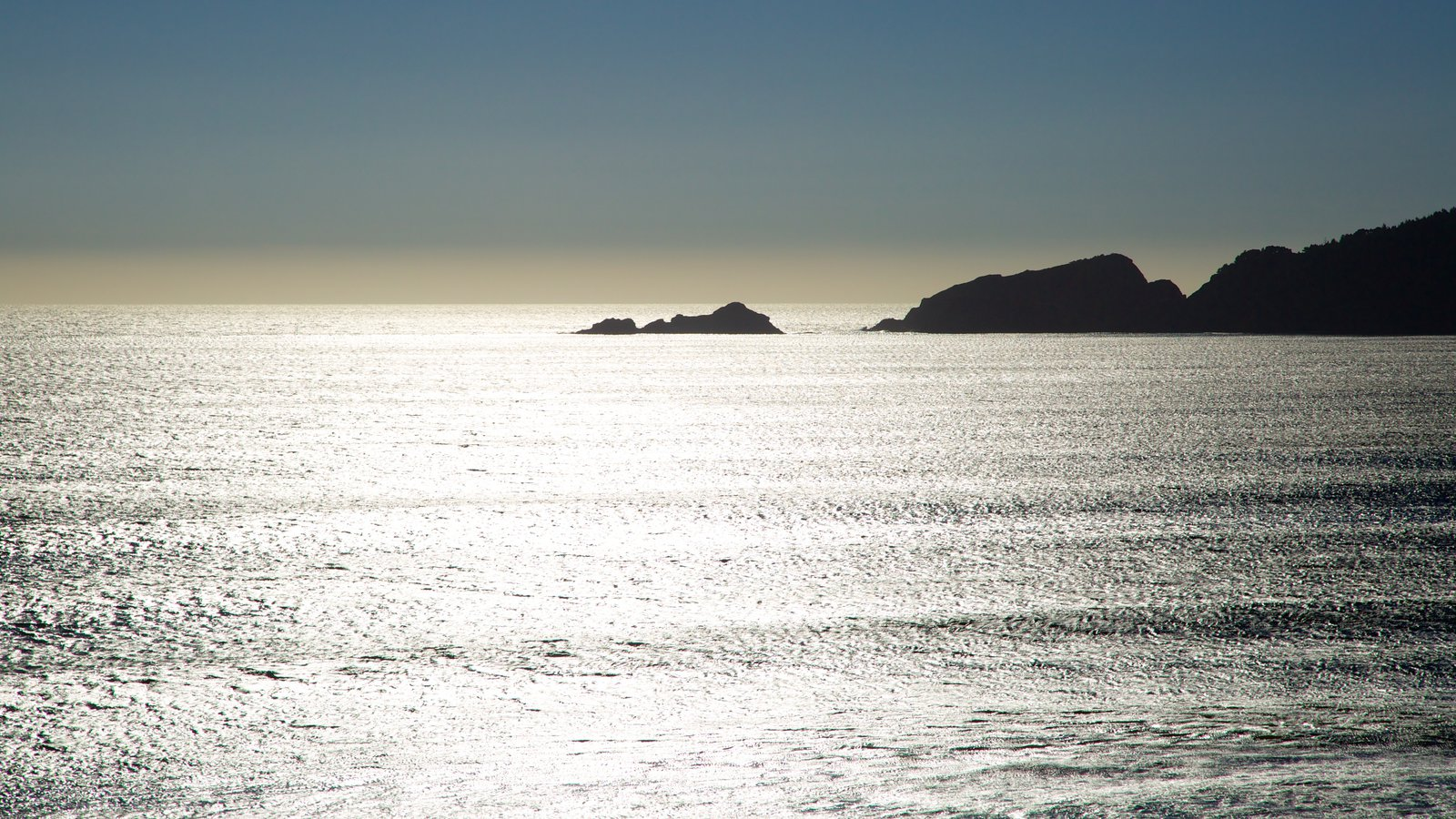 Port Orford which includes general coastal views