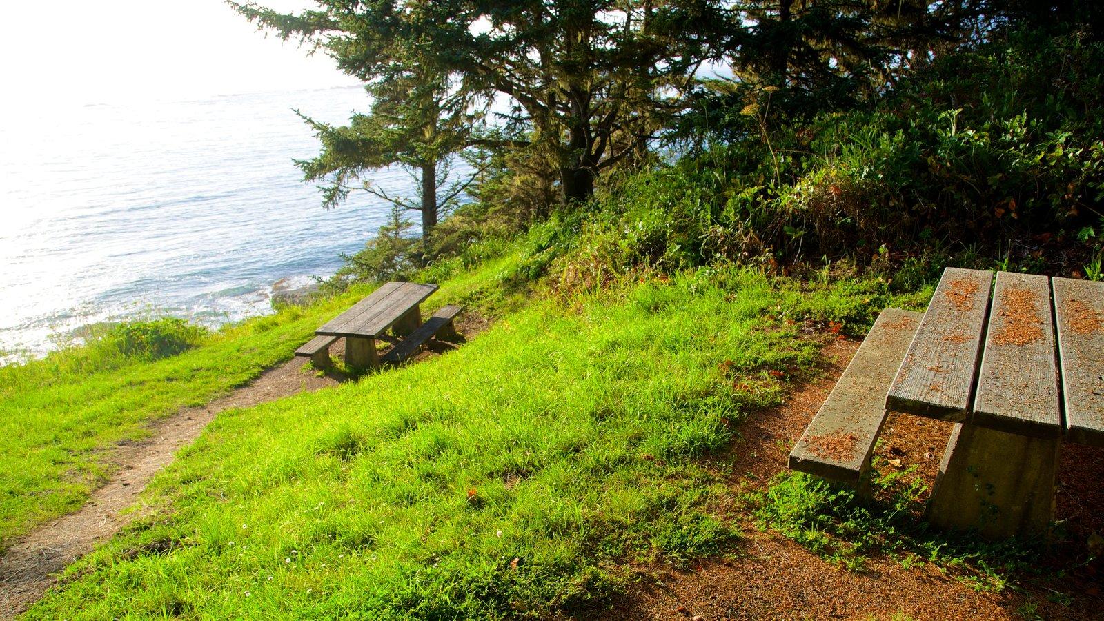 Parque estatal Cape Arago mostrando vistas generales de la costa