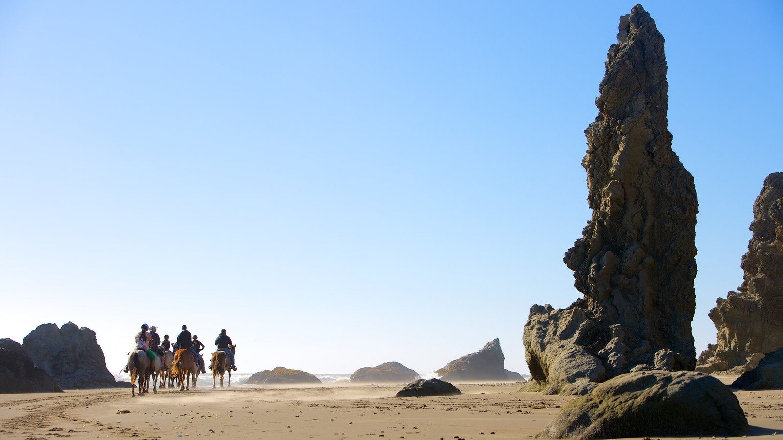 Bandon Beach which includes land animals and horse riding