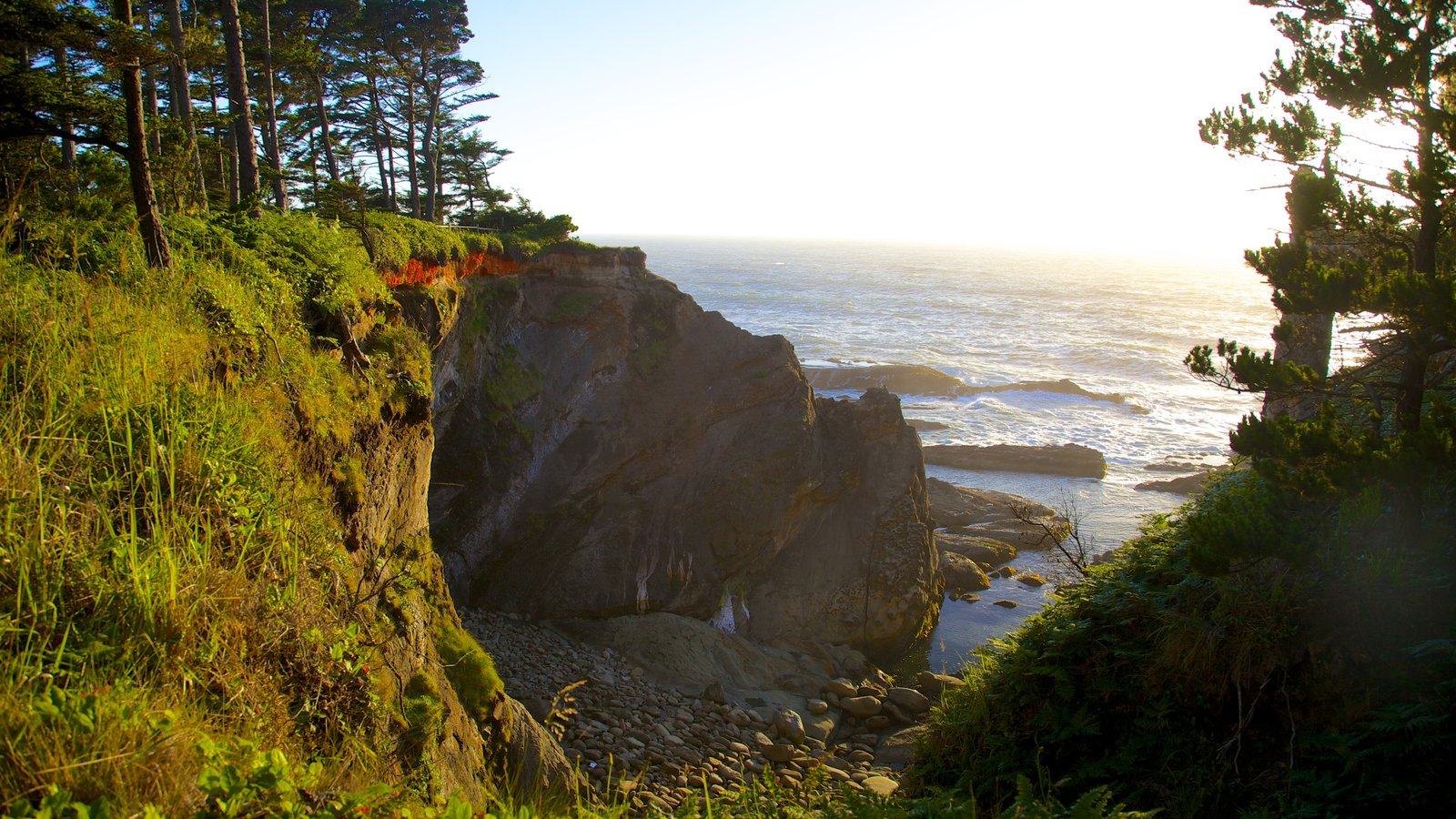 Parque estatal Shore Acres que incluye costa rocosa