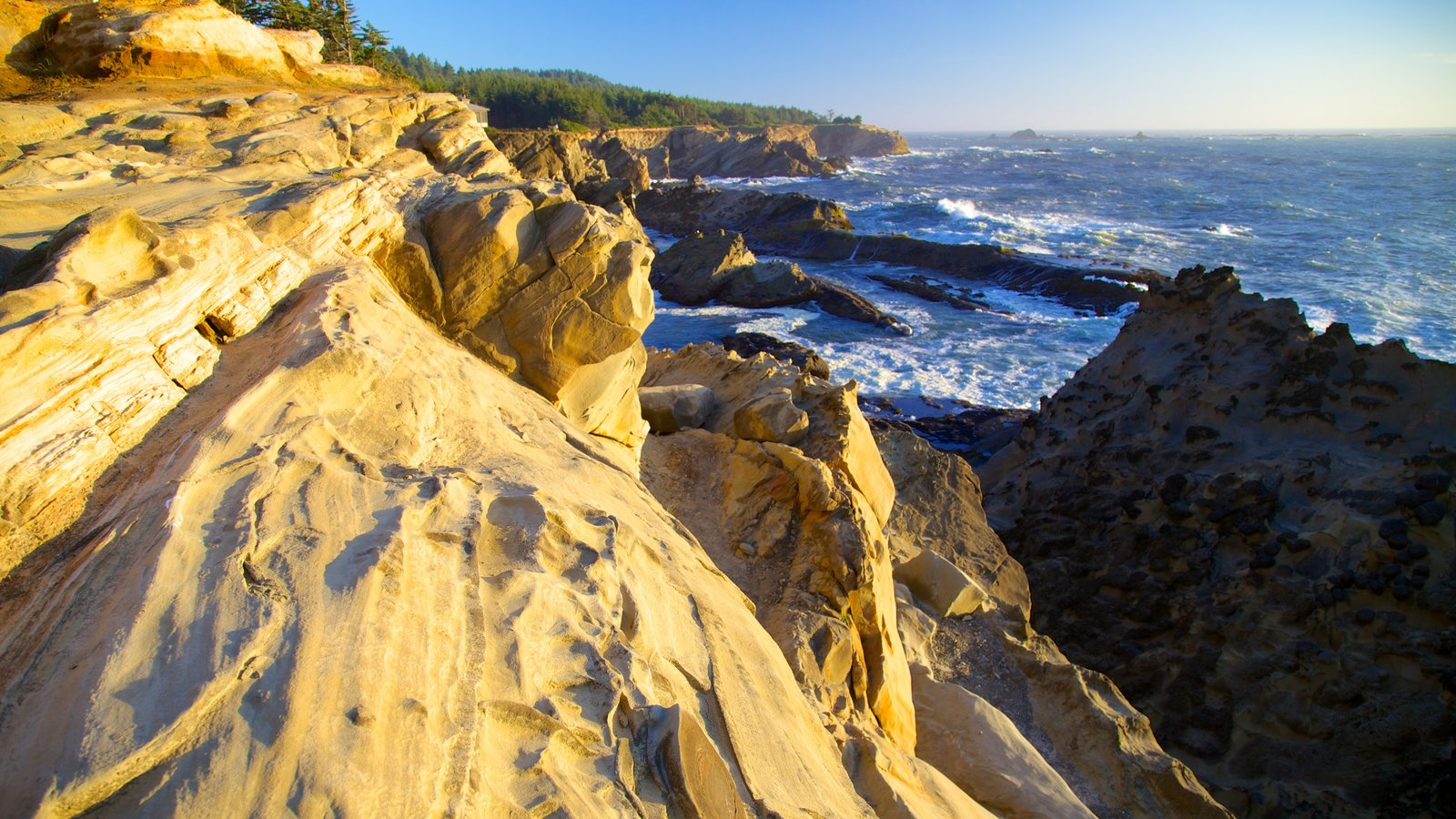 Shore Acres State Park showing rocky coastline