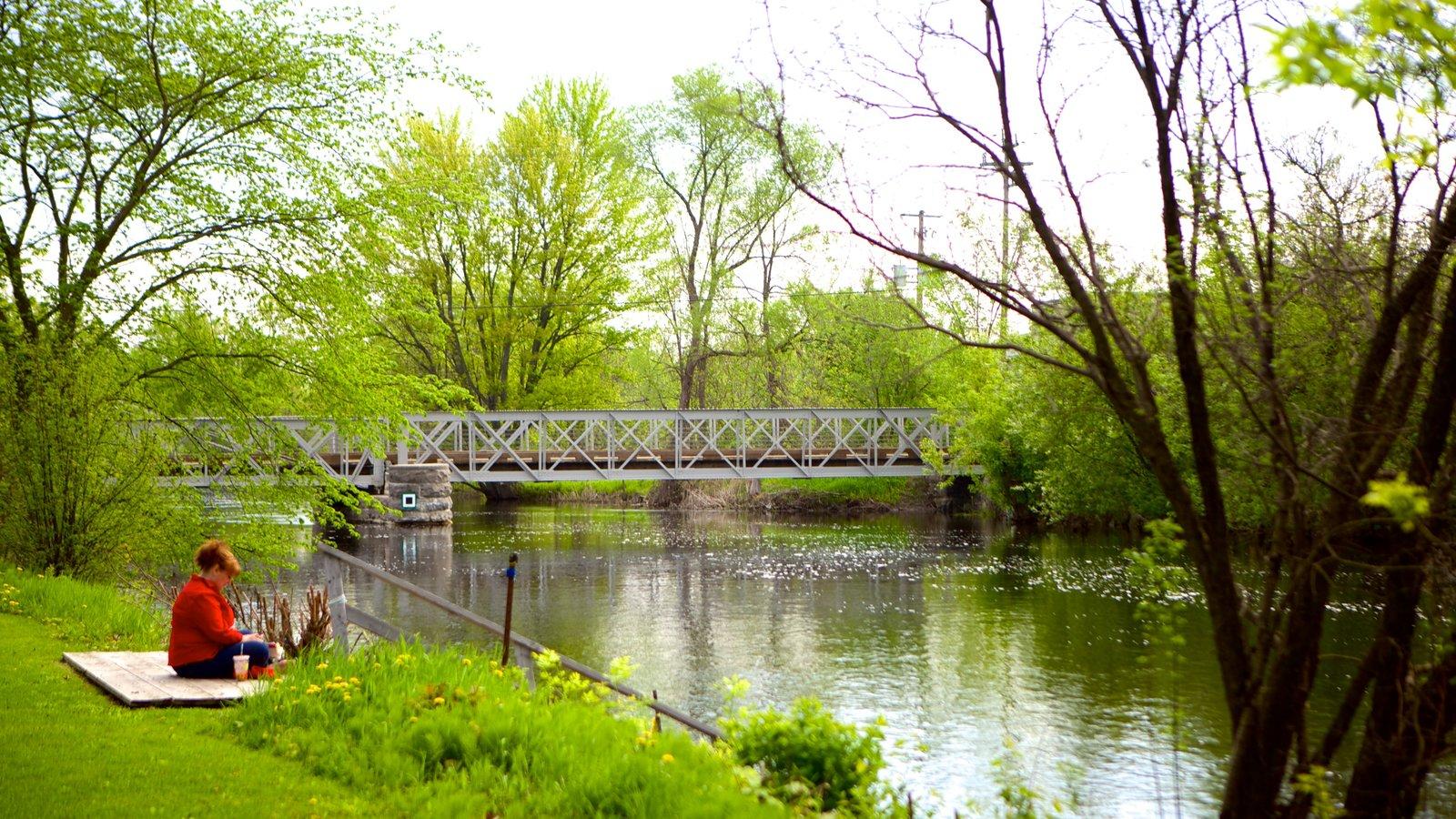 Perth que inclui uma ponte e um rio ou córrego assim como uma mulher sozinha