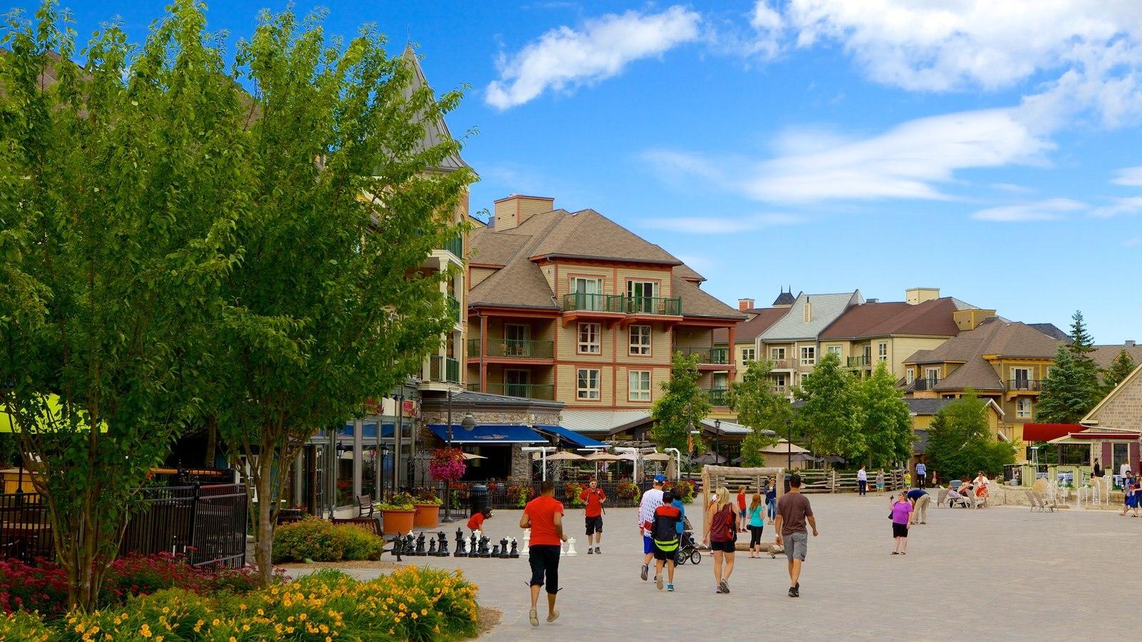 Blue Mountains que inclui cenas de rua, uma praça ou plaza e arquitetura de patrimônio