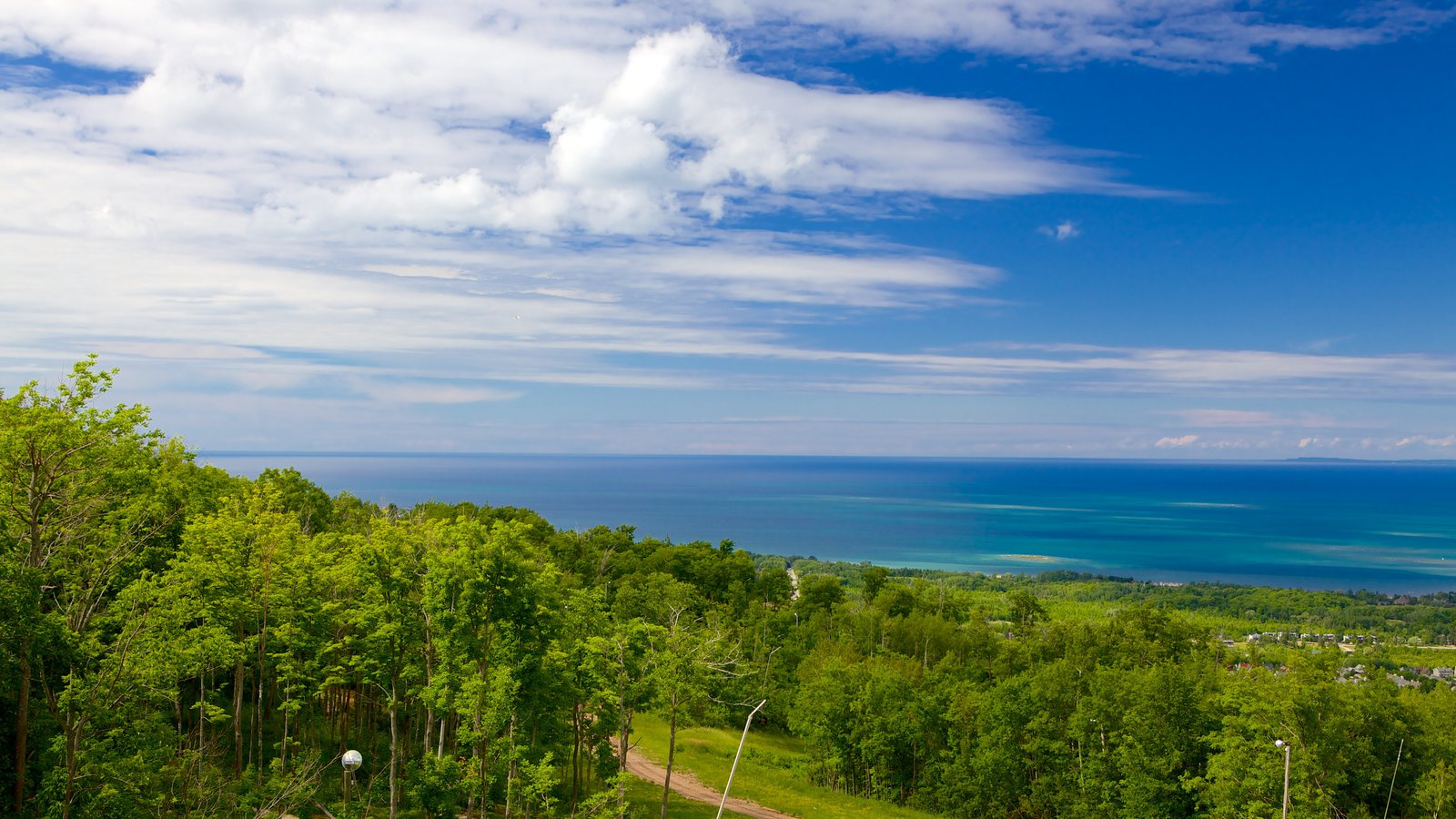 Blue Mountains mostrando florestas e paisagens litorâneas
