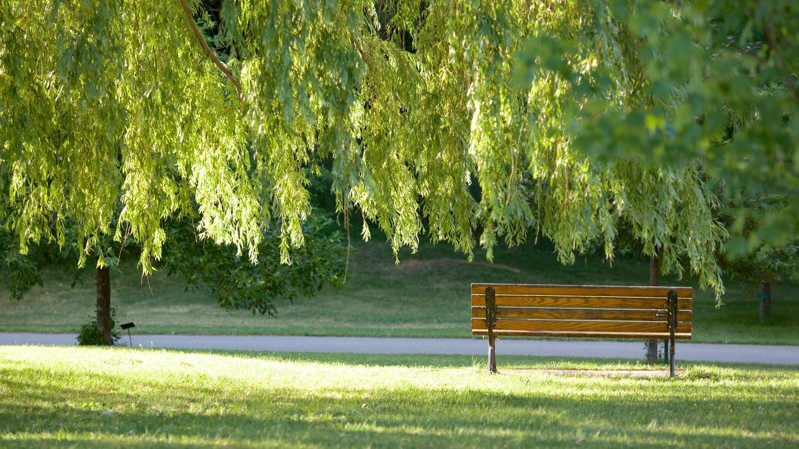 Collingwood caracterizando um jardim