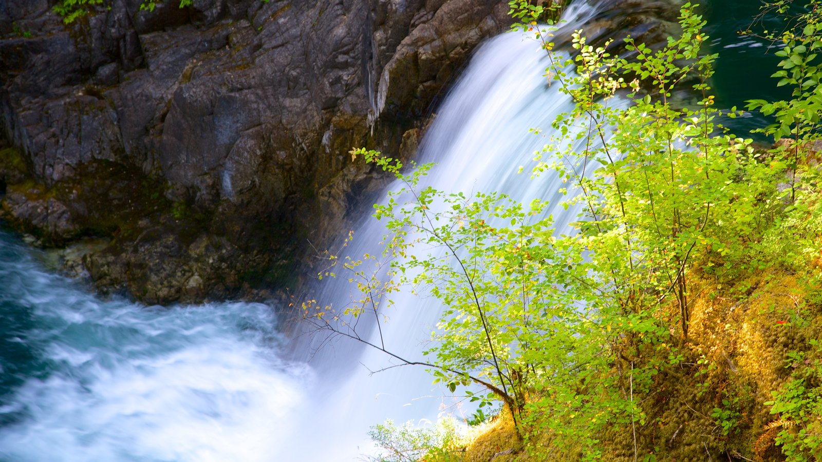 Little Qualicum Falls Provincial Park caracterizando uma cachoeira
