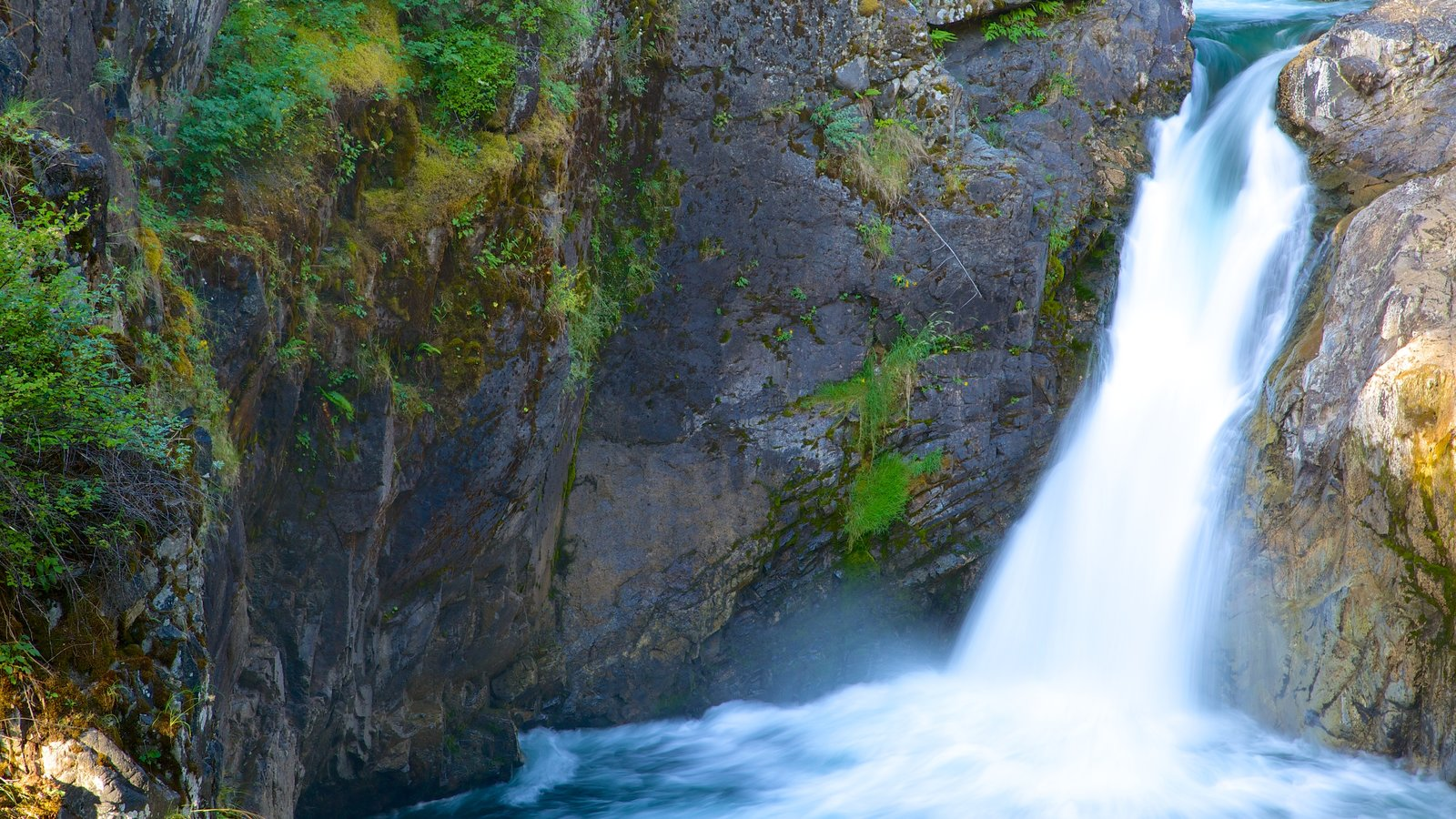 Little Qualicum Falls Provincial Park showing a waterfall