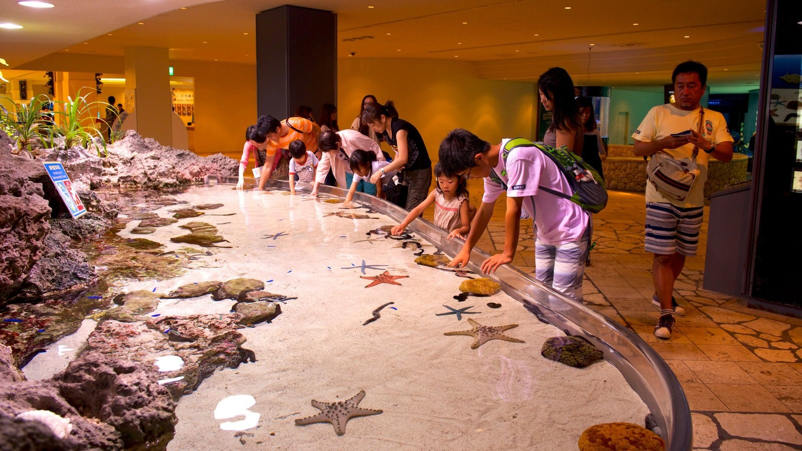 Okinawa Churaumi Aquarium which includes marine life and interior views