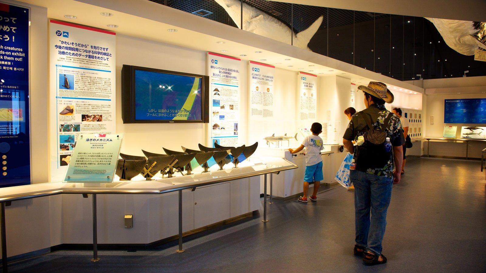 Okinawa Churaumi Aquarium featuring interior views and marine life