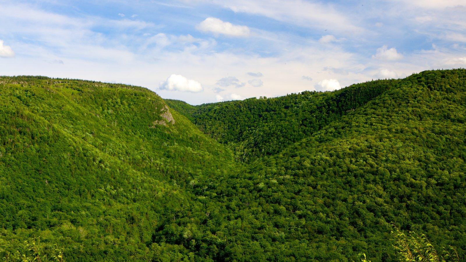 Cape Breton Highlands National Park que inclui montanhas