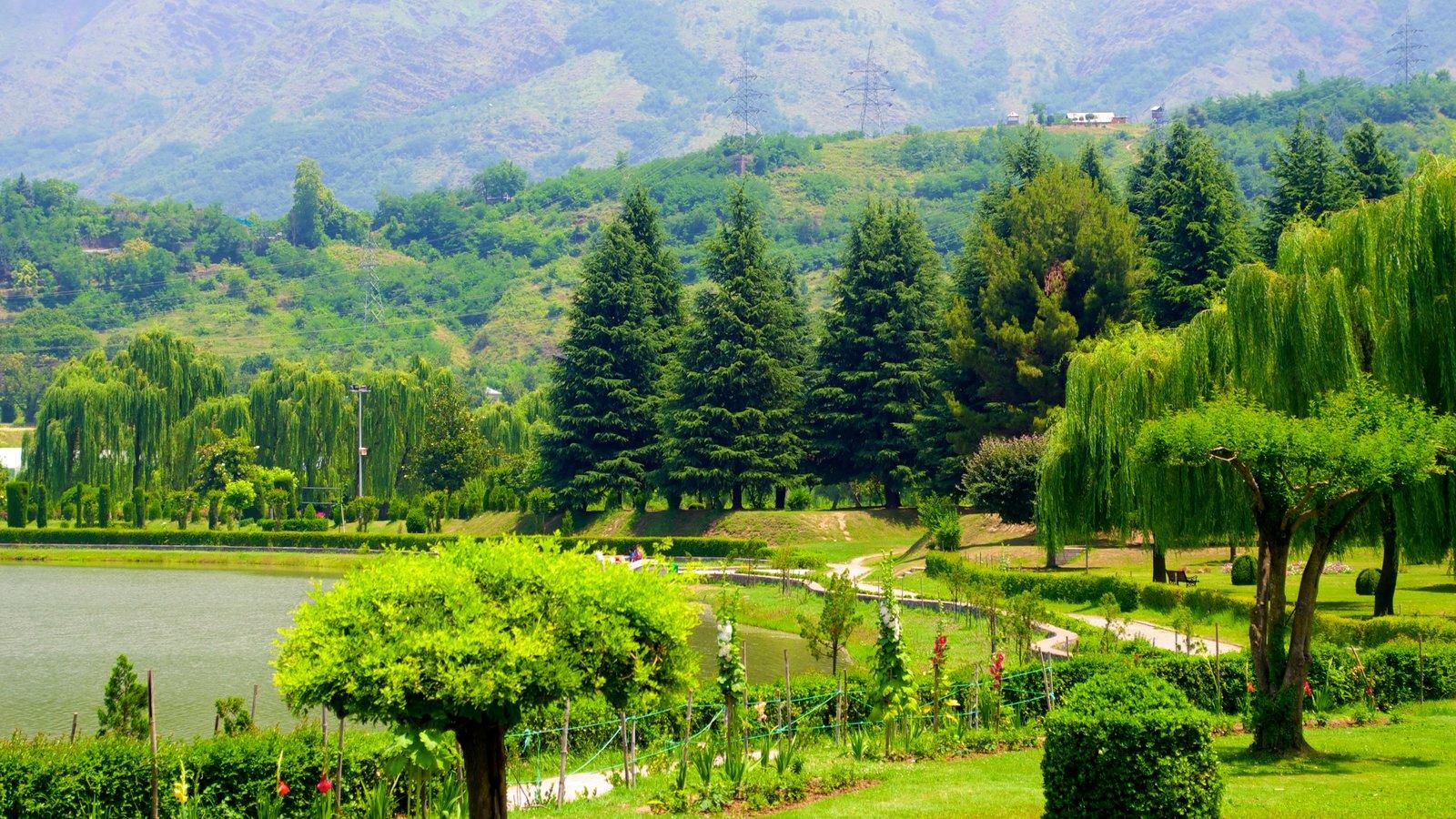 Botanical Garden showing a lake or waterhole and a garden