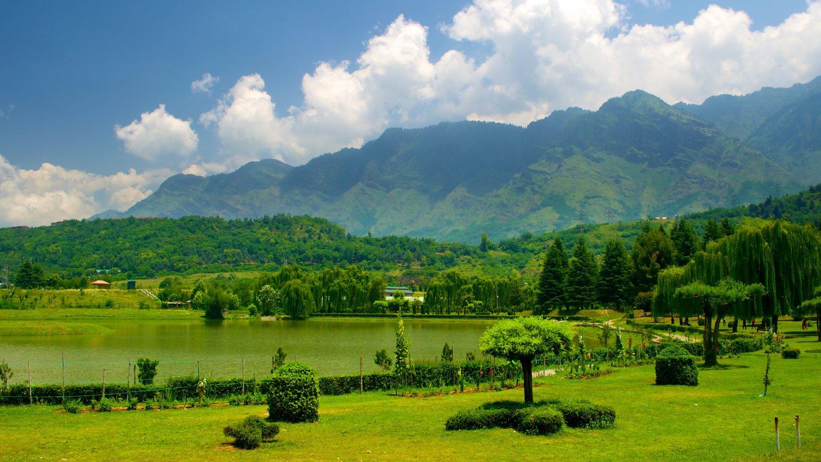 Botanical Garden showing a garden and a lake or waterhole