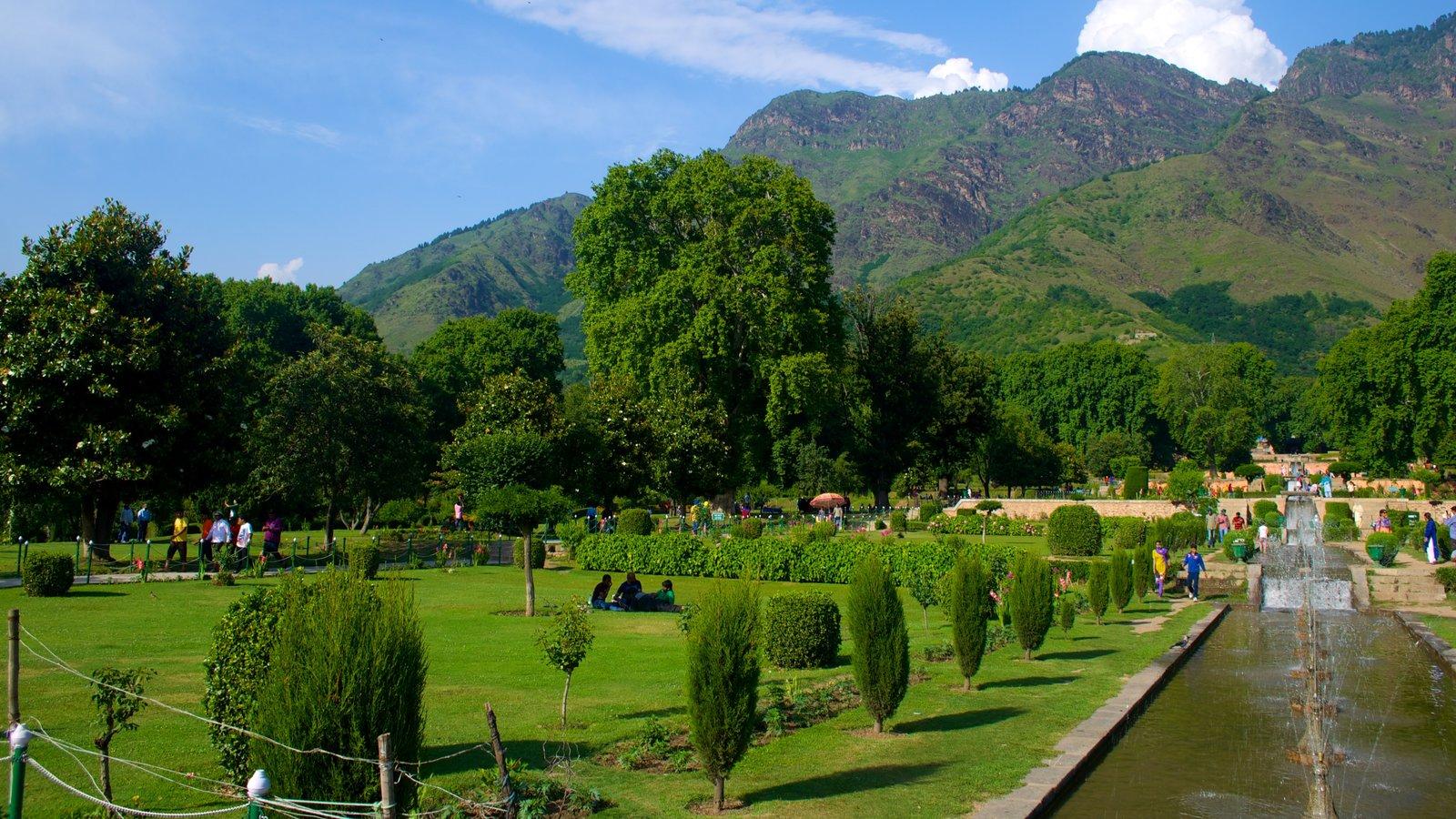 Mughal Gardens showing a garden