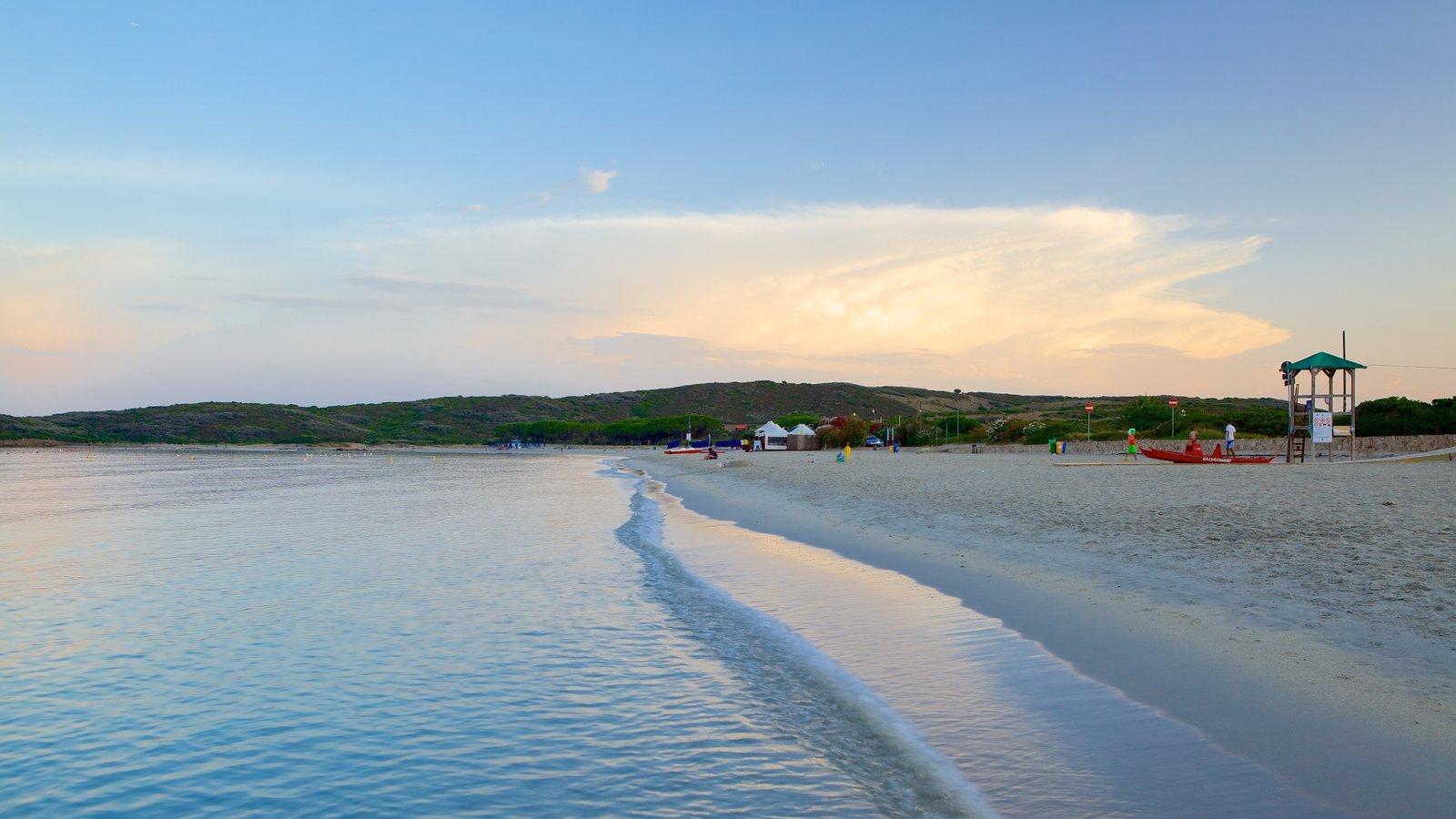 Pittulongu Beach showing a beach