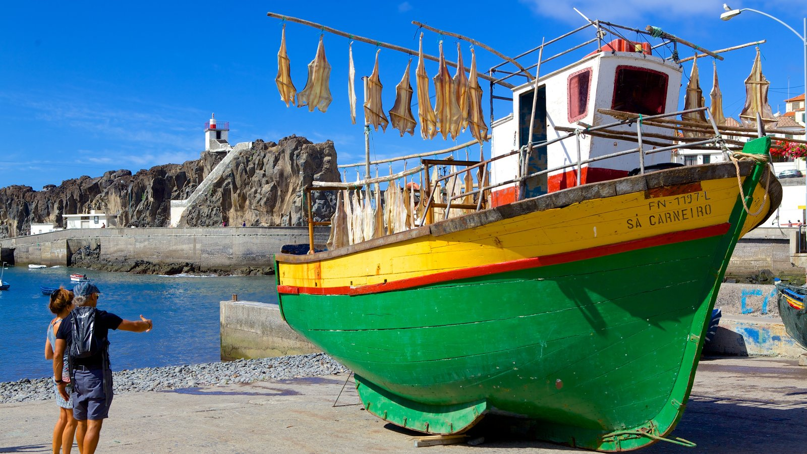 Camara de Lobos which includes a bay or harbor and a beach