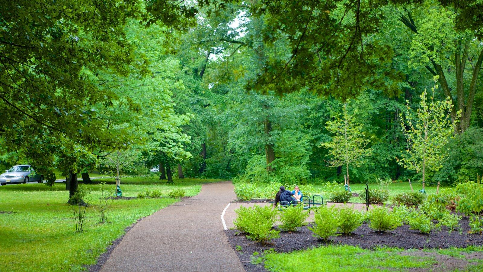 Branch Brook Park showing a park