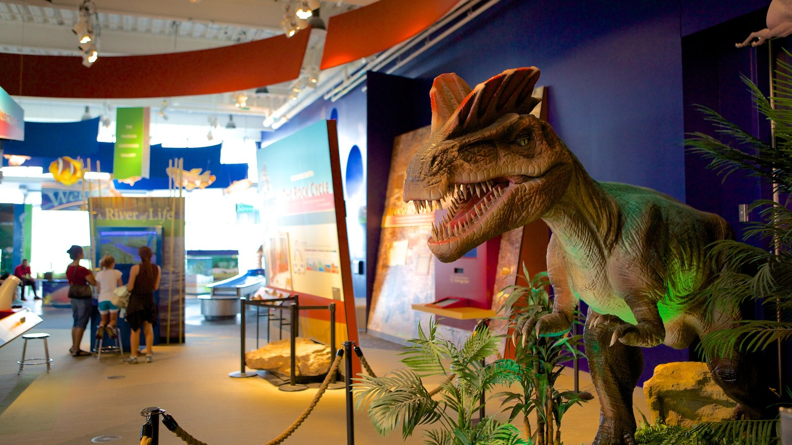 Centro de Ciencias de Connecticut ofreciendo vistas interiores